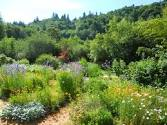 giardino commestibile