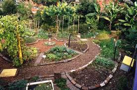 permacultura02.jpg